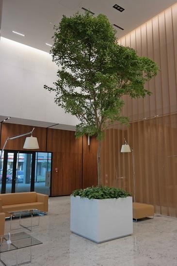 Gdański Business Center Hol Aviva
